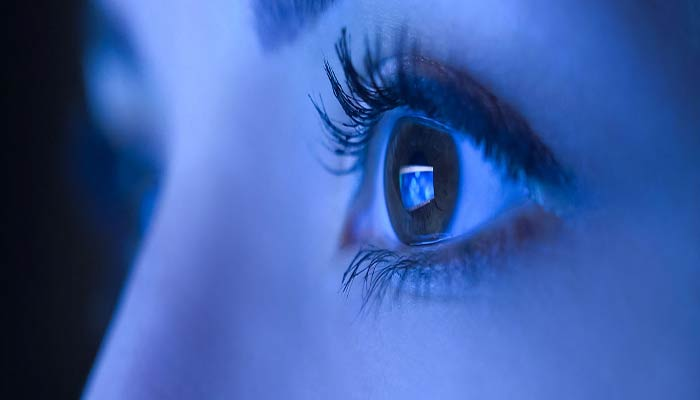 human eye contains two types of light-sensitive cells